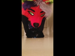 FEMBOY FOX sucks LION dick